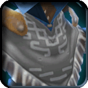 Equipment-Nameless Poncho icon.png