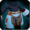 Equipment-Glacial Splash Trunks icon.png